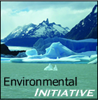 Brithinee - Environmental Initiative