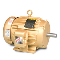 Baldor-Reliance Shaft Grounding or Three Phase Enclosed AC Motor