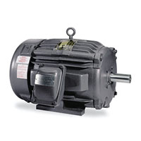 Baldor-Reliance Explosion Proof General Purpose AC Motor - 2