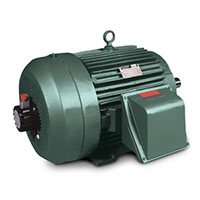 Baldor-Reliance AC VS Master and General Severe Duty Motors