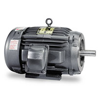 Baldor-Reliance Explosion Proof General Purpose AC Motor - 4