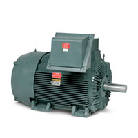 Baldor-Reliance General Severe Duty AC Motor - 2
