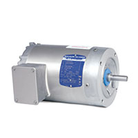 Baldor-Reliance Paint Free AC Motor - 2