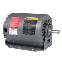 Baldor-Reliance Fan and Blower AC Motor - 2