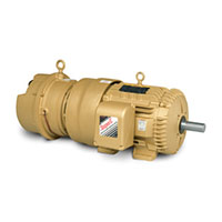Baldor-Reliance 42.84 in. Overall Length and 82 Power Factor Short-Series Brake AC Motor
