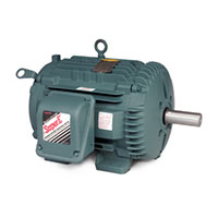 Baldor-Reliance Chiller/Cooling Tower AC Motor - 2