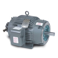 Baldor-Reliance AC Inverter/Vector Duty AC Motor