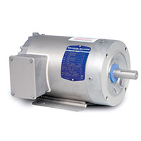 Baldor-Reliance Paint Free AC Motor - 4