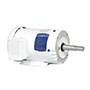 White Washdown Motors, Close-Coupled Pump Motors