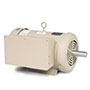 Dairy/Vacuum Pump Motors
