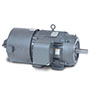 AC Inverter/Vector Duty Motors