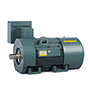 General Purpose and Severe Duty Motors