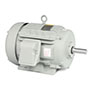 Automotive Duty Motors