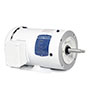White Washdown, Paint Free, or 56j Jet Pump Motors